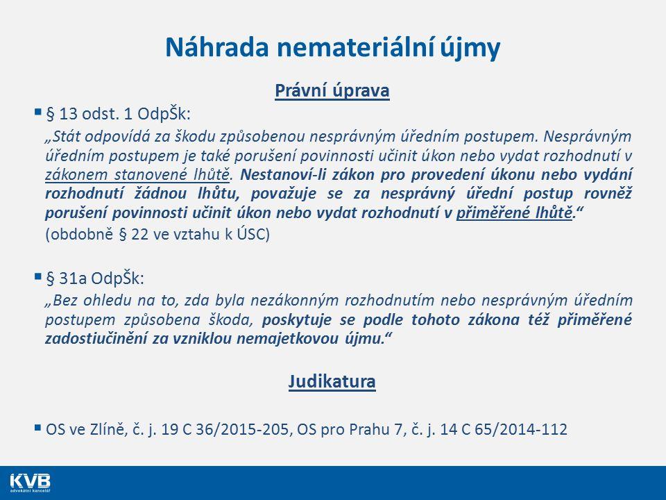 Náhrada nemateriální újmy Právní úprava  § 13 odst.