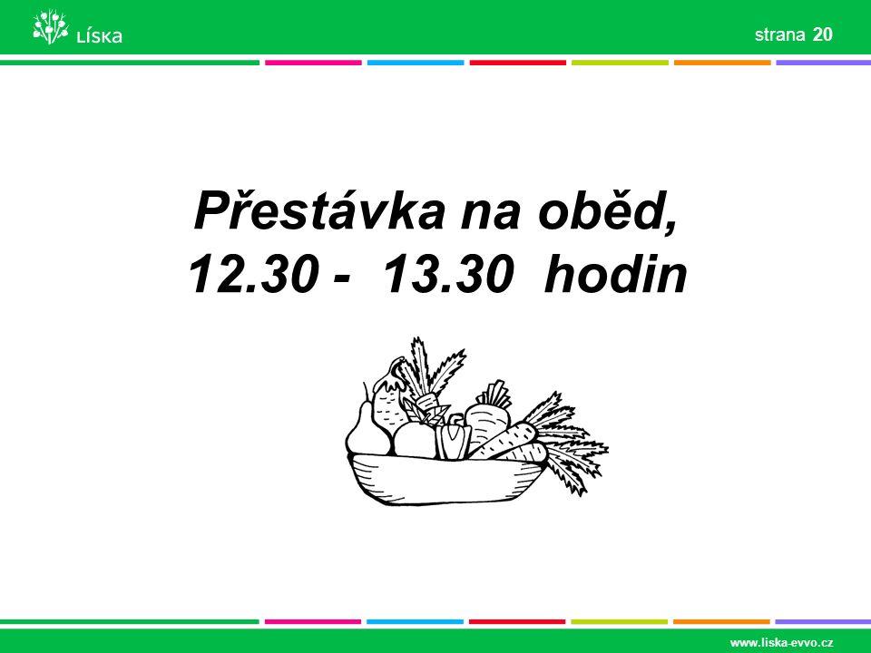 Přestávka na oběd, 12.30 - 13.30 hodin www.liska-evvo.cz 20 strana