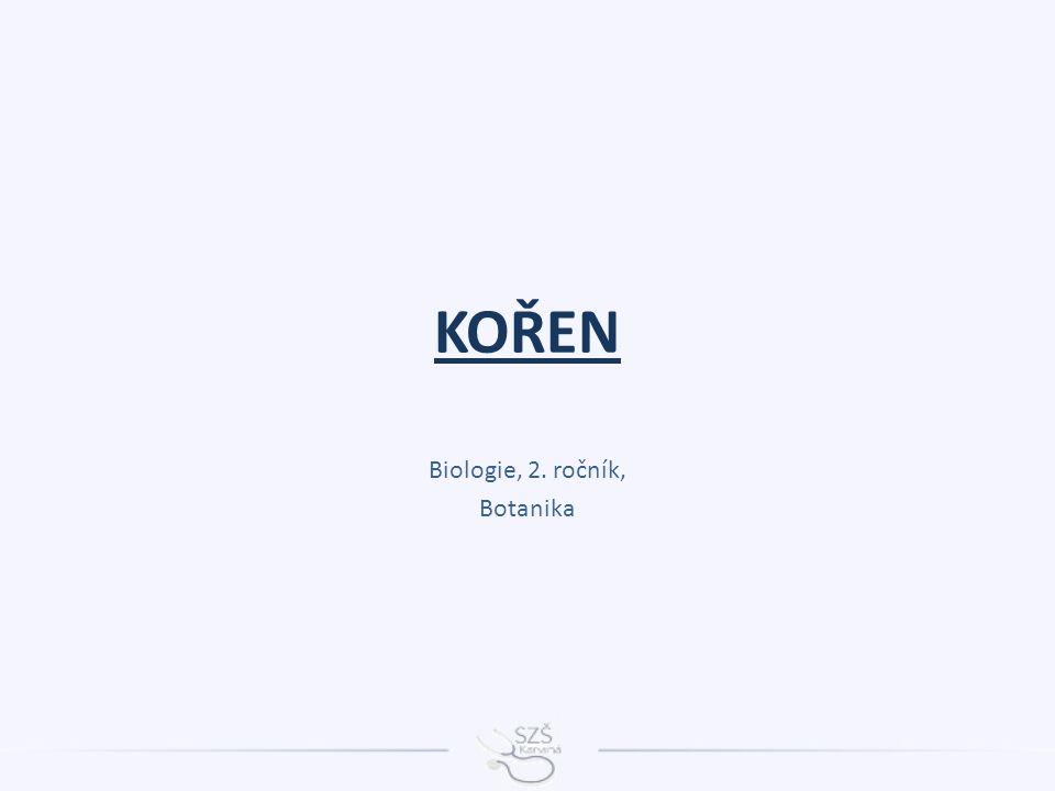 KOŘEN Biologie, 2. ročník, Botanika