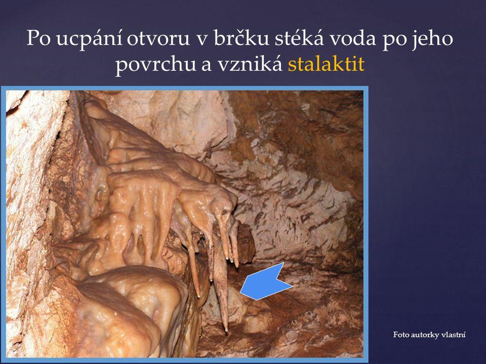 Po ucpání otvoru v brčku stéká voda po jeho povrchu a vzniká stalaktit Foto autorky vlastní