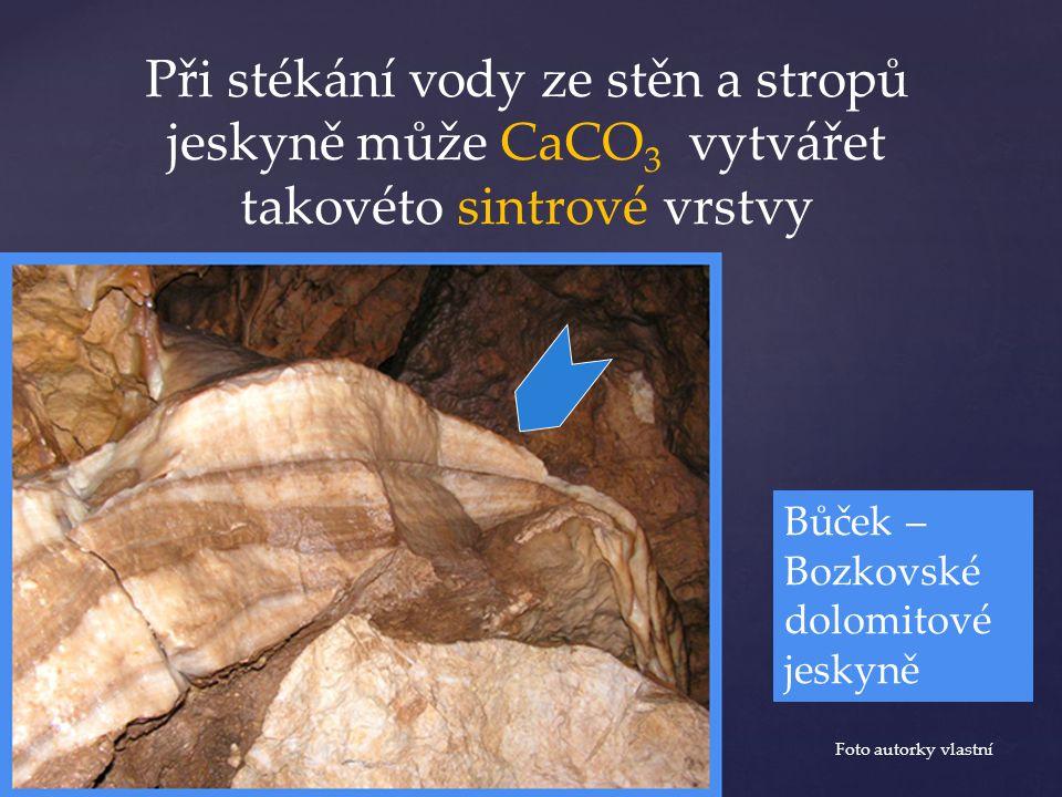 Při stékání vody ze stěn a stropů jeskyně může CaCO 3 vytvářet takovéto sintrové vrstvy Foto autorky vlastní Bůček – Bozkovské dolomitové jeskyně