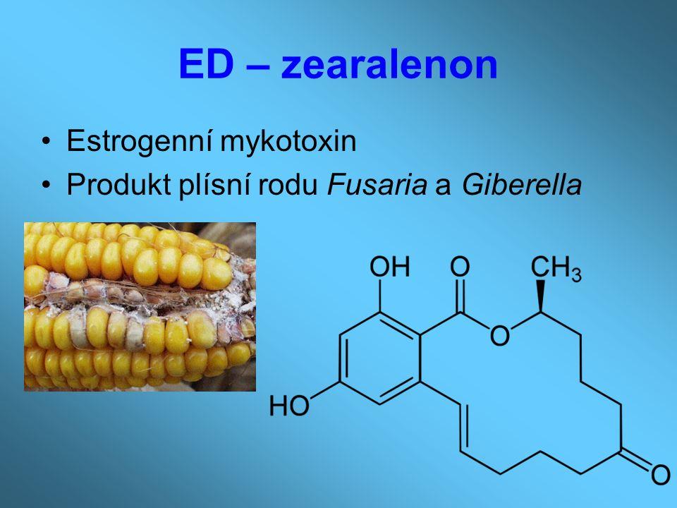 ED – zearalenon Estrogenní mykotoxin Produkt plísní rodu Fusaria a Giberella