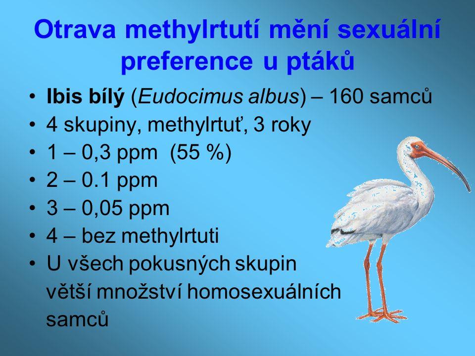 Otrava methylrtutí mění sexuální preference u ptáků Ibis bílý (Eudocimus albus) – 160 samců 4 skupiny, methylrtuť, 3 roky 1 – 0,3 ppm (55 %) 2 – 0.1 ppm 3 – 0,05 ppm 4 – bez methylrtuti U všech pokusných skupin větší množství homosexuálních samců