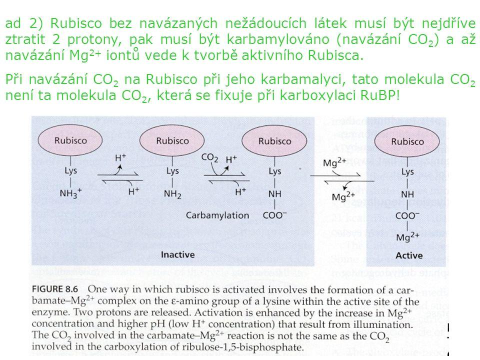 ad 2) Rubisco bez navázaných nežádoucích látek musí být nejdříve ztratit 2 protony, pak musí být karbamylováno (navázání CO 2 ) a až navázání Mg 2+ iontů vede k tvorbě aktivního Rubisca.