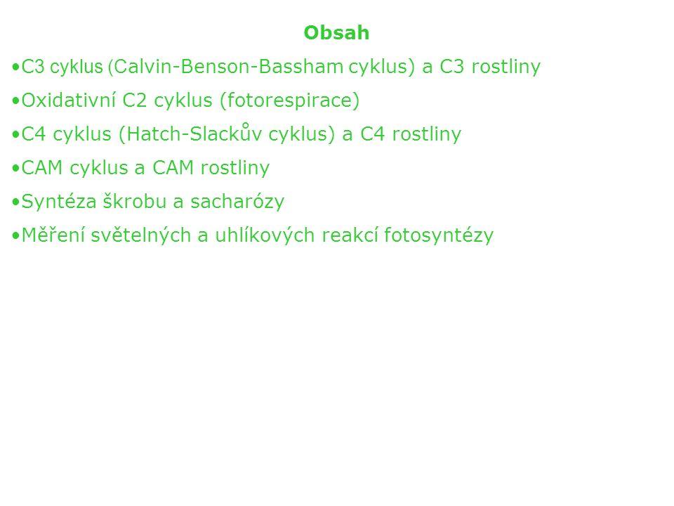 Obsah C 3 cyklus (C alvin-Benson-Bassham cyklus) a C3 rostliny Oxidativní C2 cyklus (fotorespirace) C4 cyklus (Hatch-Slackův cyklus) a C4 rostliny CAM cyklus a CAM rostliny Syntéza škrobu a sacharózy Měření světelných a uhlíkových reakcí fotosyntézy