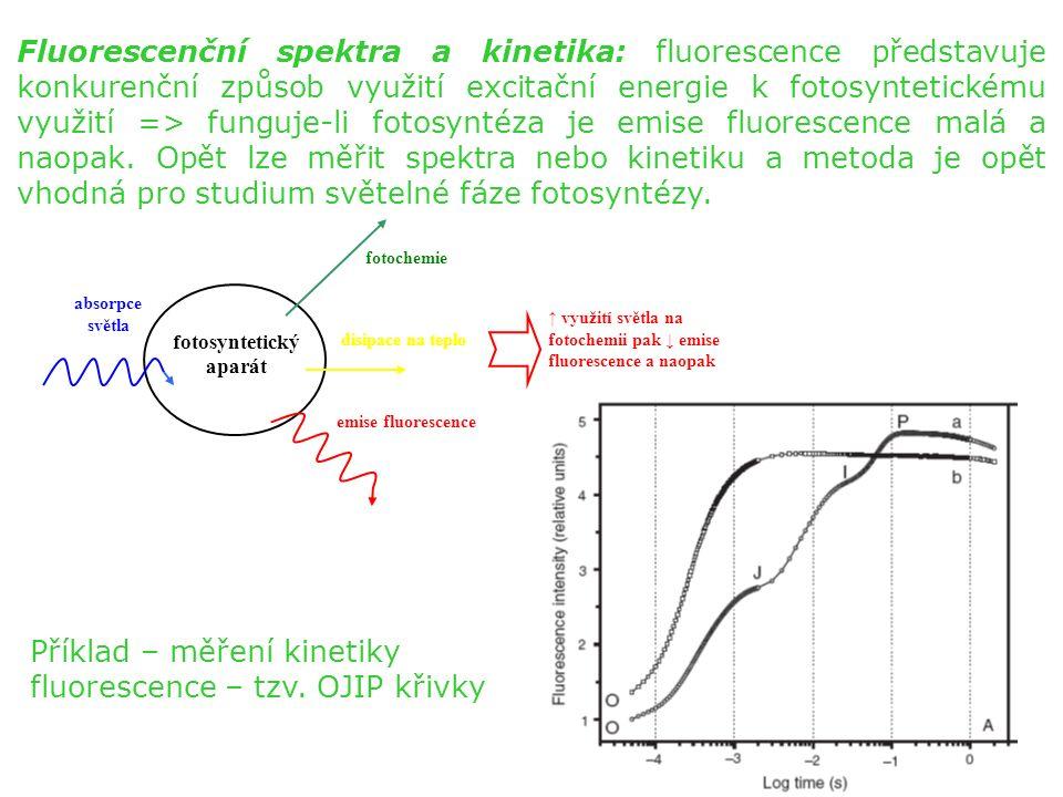 Fluorescenční spektra a kinetika: fluorescence představuje konkurenční způsob využití excitační energie k fotosyntetickému využití => funguje-li fotosyntéza je emise fluorescence malá a naopak.