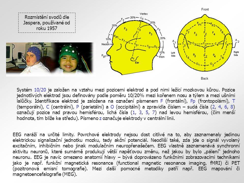 Systém 10/20 je založen na vztahu mezi pozicemi elektrod a pod nimi ležící mozkovou kůrou. Pozice jednotlivých elektrod jsou definovány podle poměru 1