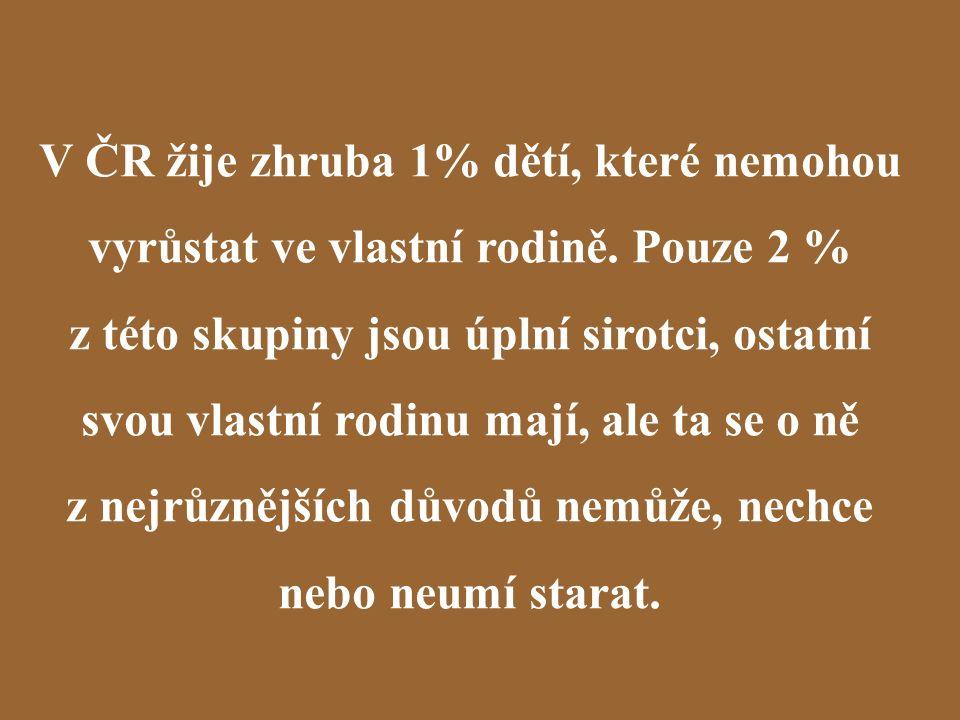 V ČR žije zhruba 1% dětí, které nemohou vyrůstat ve vlastní rodině.