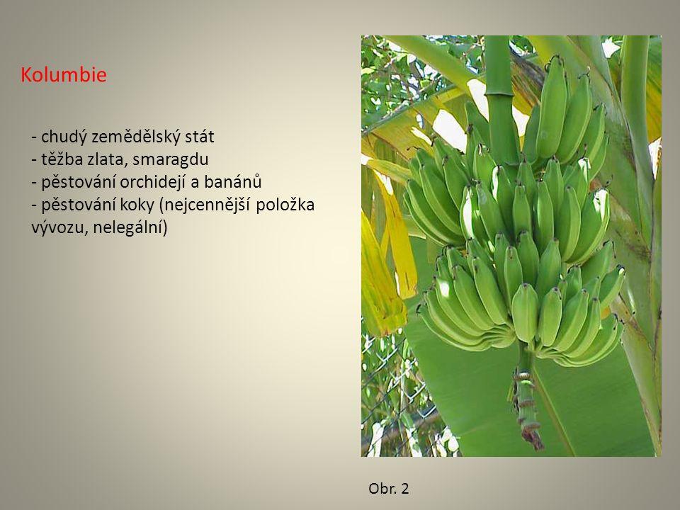 Kolumbie - chudý zemědělský stát - těžba zlata, smaragdu - pěstování orchidejí a banánů - pěstování koky (nejcennější položka vývozu, nelegální) Obr.