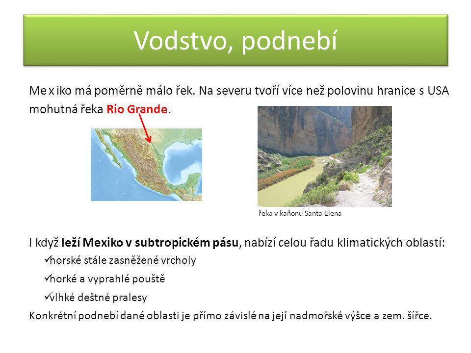 Flóra a fauna Mexické ekosystémy poskytují vhodné podmínky pro život mnoha druhů rostlin a živočichů.