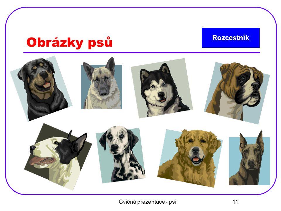 Cvičná prezentace - psi 11 Obrázky psů Rozcestník