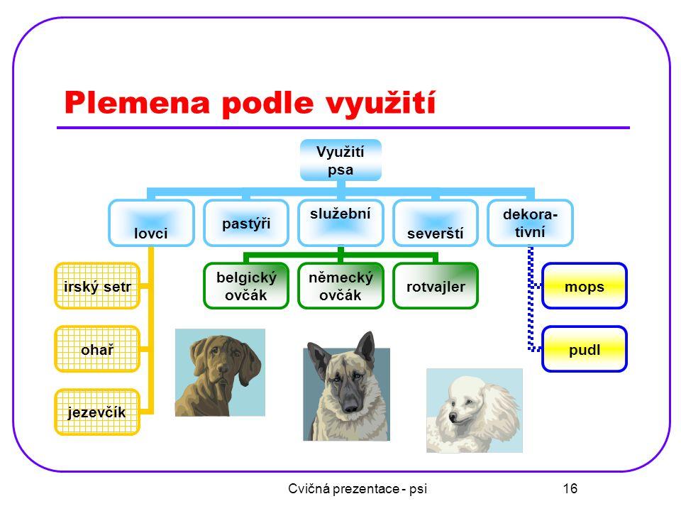 Cvičná prezentace - psi 16 Plemena podle využití