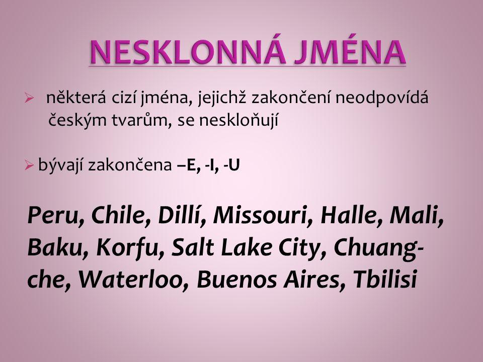  některá cizí jména, jejichž zakončení neodpovídá českým tvarům, se neskloňují  bývají zakončena –E, -I, -U Peru, Chile, Dillí, Missouri, Halle, Mali, Baku, Korfu, Salt Lake City, Chuang- che, Waterloo, Buenos Aires, Tbilisi