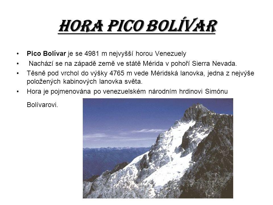 Hora pico BOLÍVAR Pico Bolívar je se 4981 m nejvyšší horou Venezuely Nachází se na západě země ve státě Mérida v pohoří Sierra Nevada. Těsně pod vrcho