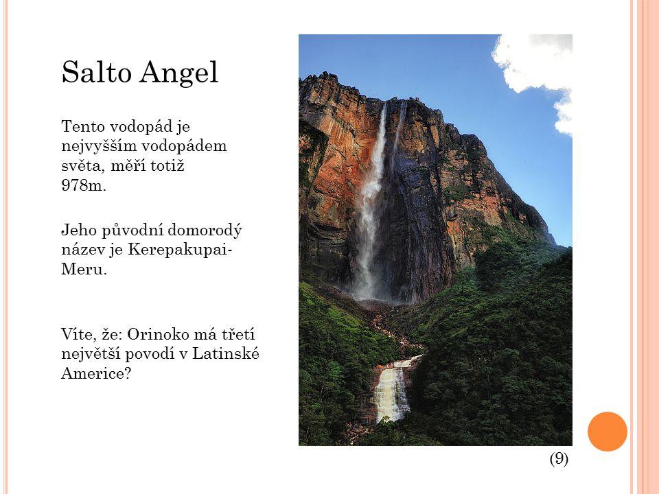 Salto Angel Tento vodopád je nejvyšším vodopádem světa, měří totiž 978m.