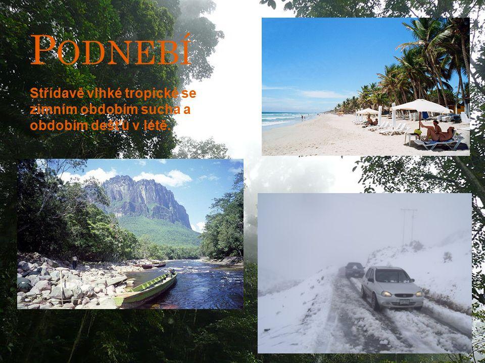 P ODNEBÍ Střídavě vlhké tropické se zimním obdobím sucha a obdobím dešťů v létě.
