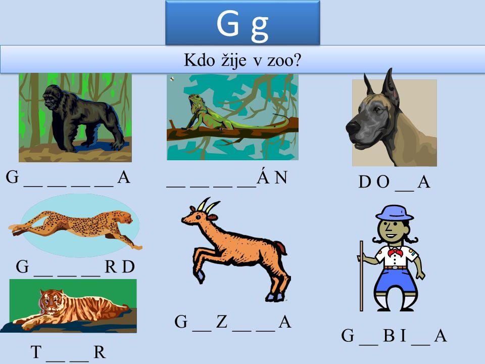 Kdo žije v zoo? G g G __ __ __ __ A __ __ __ __Á N D O __ A G __ __ __ R D G __ Z __ __ A T __ __ R G __ B I __ A