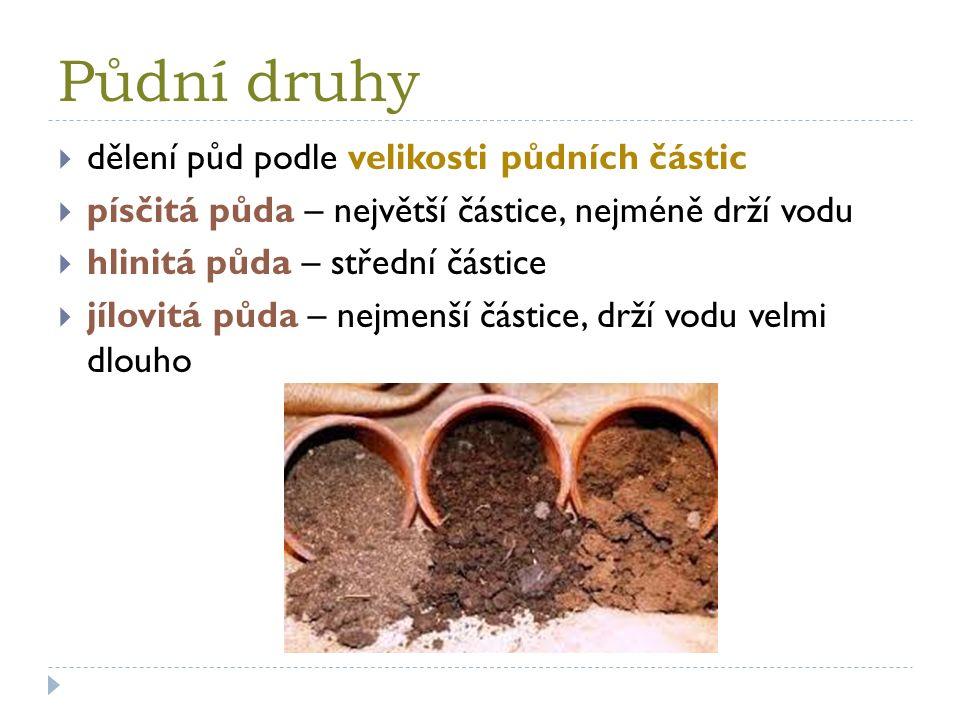 Půdní druhy  dělení půd podle velikosti půdních částic  písčitá půda – největší částice, nejméně drží vodu  hlinitá půda – střední částice  jílovitá půda – nejmenší částice, drží vodu velmi dlouho