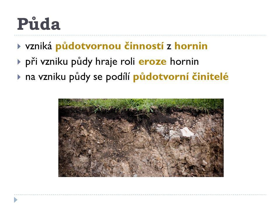Půda  vzniká půdotvornou činností z hornin  při vzniku půdy hraje roli eroze hornin  na vzniku půdy se podílí půdotvorní činitelé