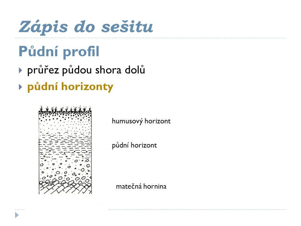 Zápis do sešitu Půdní profil  průřez půdou shora dolů  půdní horizonty humusový horizont půdní horizont matečná hornina