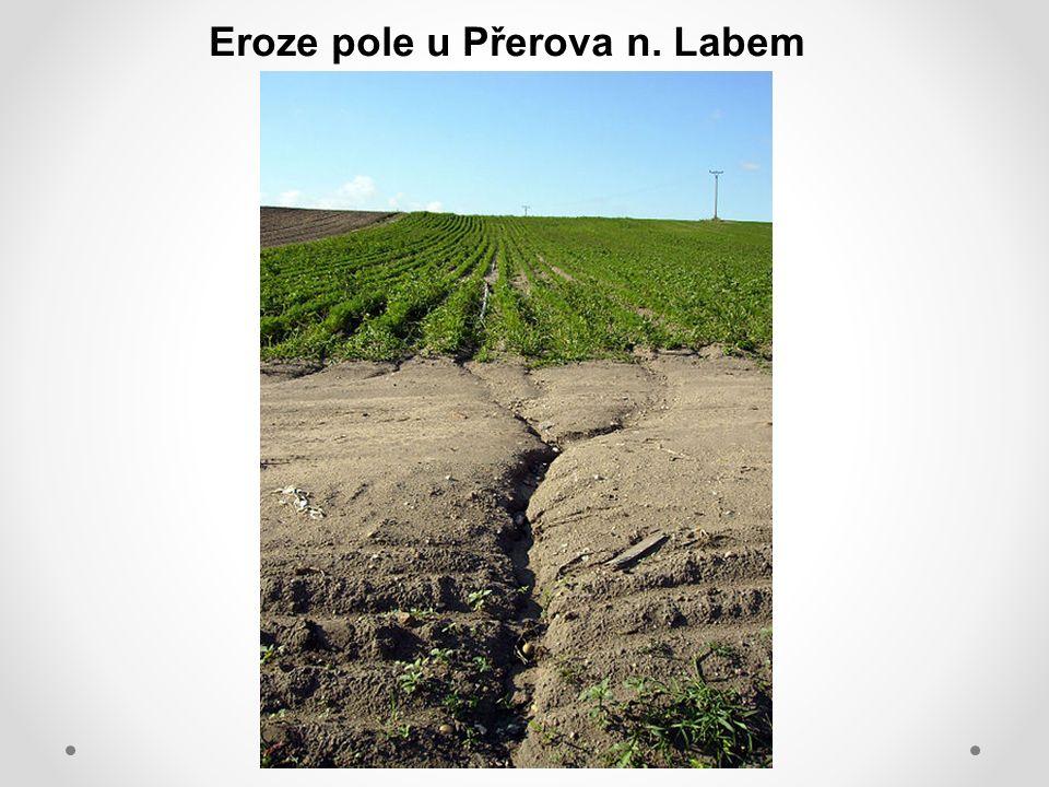 Eroze pole u Přerova n. Labem