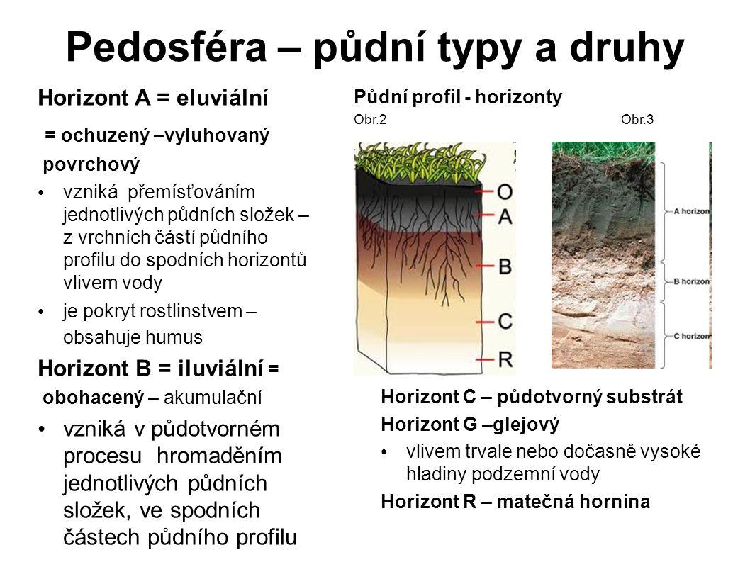 Pedosféra – půdní typy a druhy Horizont A = eluviální = ochuzený –vyluhovaný povrchový vzniká přemísťováním jednotlivých půdních složek – z vrchních č