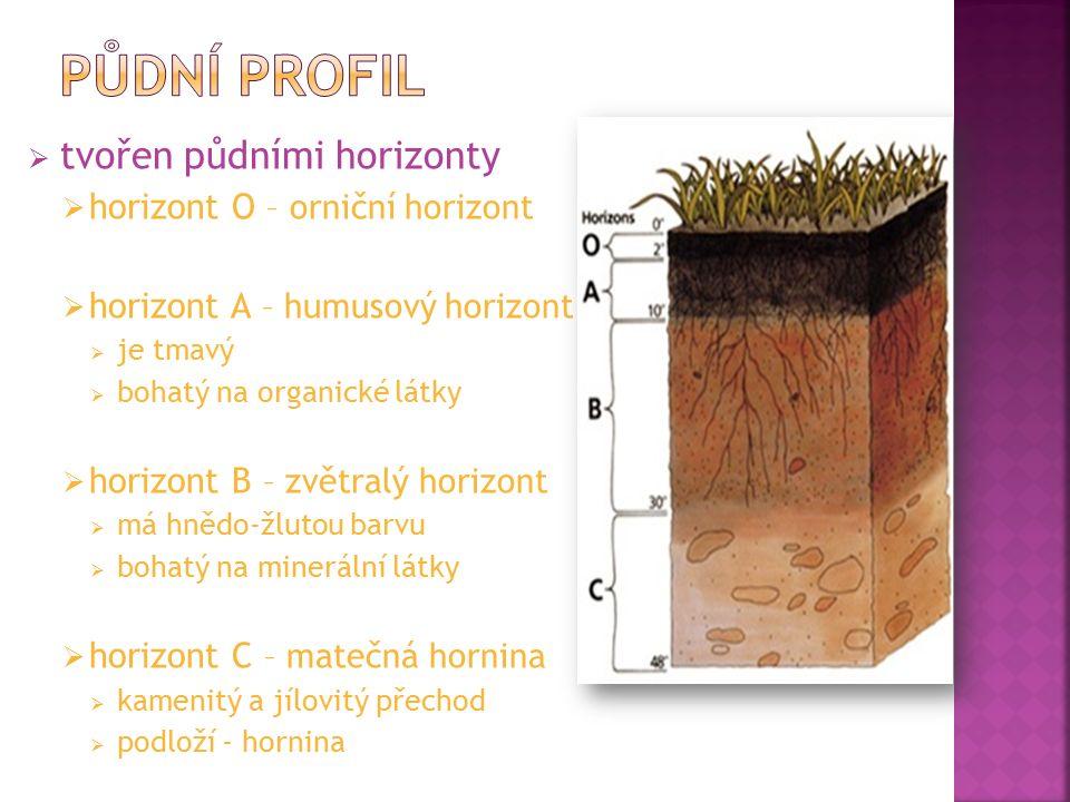  podle obsahu jílovitých částic  černozemě  velmi úrodné  půdy nížin do 350 m nad mořem  jižní Morava, Česká tabule  velká vrstva humusu 60 - 100 cm  pěstuje se – kukuřice, cukrová řepa, pšenice a slad  hnědé země  nejrozšířenější v ČR  středně úrodná  do nadmořské výšky 500 m  pěstuje se – obilniny  podzolové půdy  málo úrodné  do nadmořské výšky 700 m  obvykle kyselé půdy  pěstuje se - brambory černozem hnědozempodzol