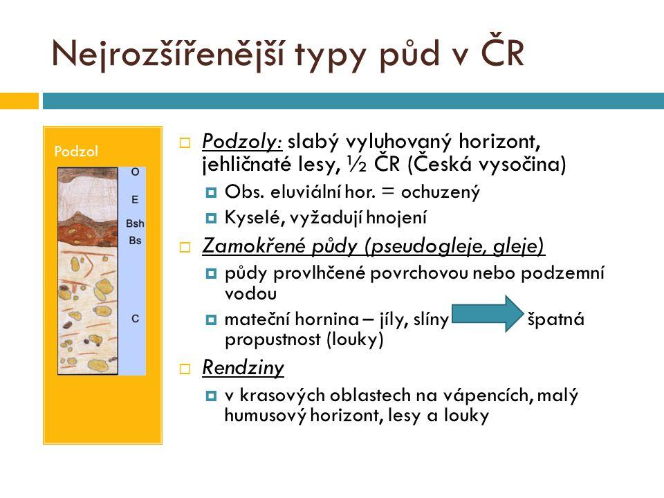 Nejrozšířenější typy půd v ČR Podzol  Podzoly: slabý vyluhovaný horizont, jehličnaté lesy, ½ ČR (Česká vysočina)  Obs. eluviální hor. = ochuzený  K