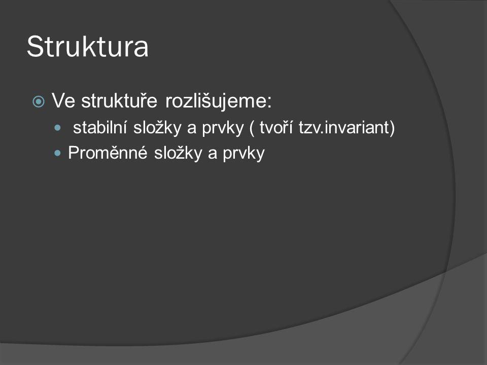 Struktura  Ve struktuře rozlišujeme: stabilní složky a prvky ( tvoří tzv.invariant) Proměnné složky a prvky
