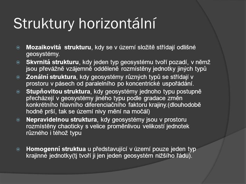 Struktury horizontální  Mozaikovitá strukturu, kdy se v území složitě střídají odlišné geosystémy.  Skvrnitá strukturu, kdy jeden typ geosystému tvo