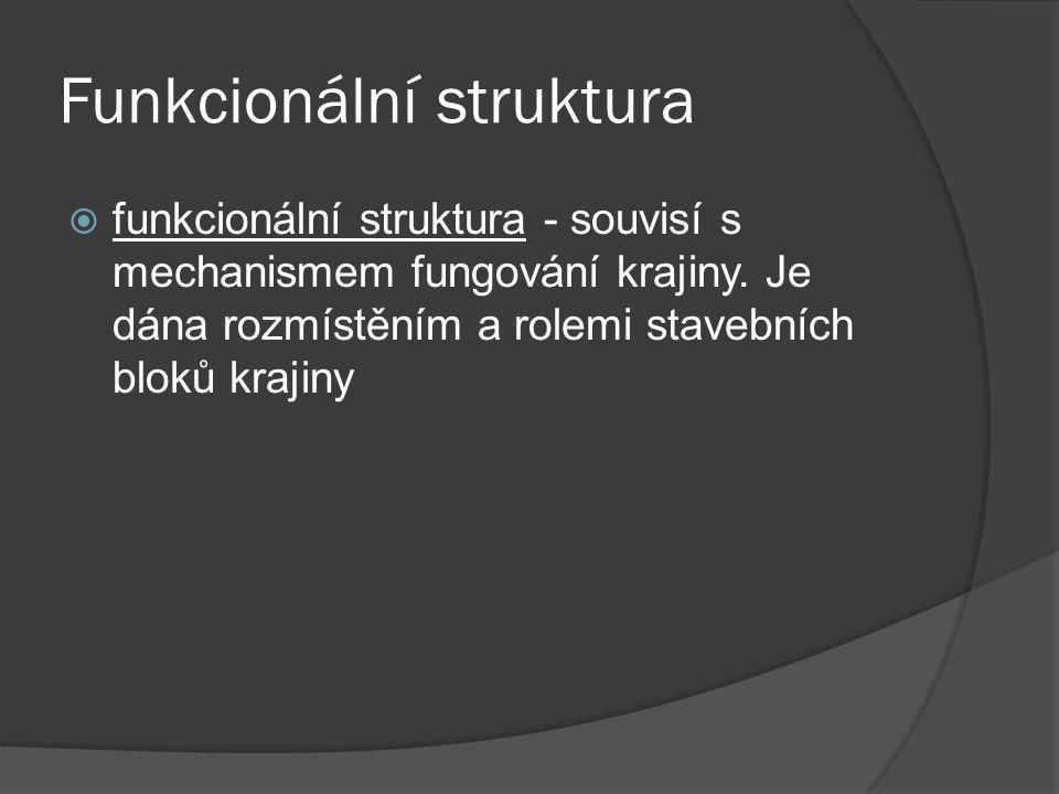 Funkcionální struktura  funkcionální struktura - souvisí s mechanismem fungování krajiny. Je dána rozmístěním a rolemi stavebních bloků krajiny