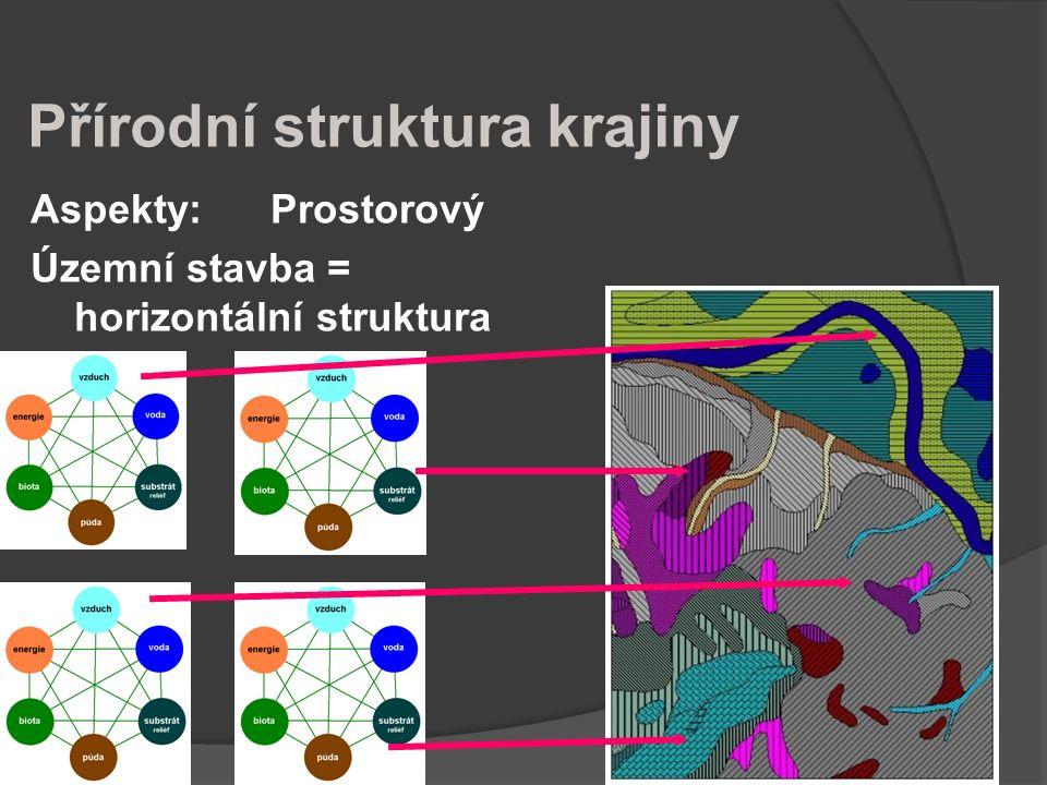 Přírodní struktura krajiny Aspekty: Prostorový Územní stavba = horizontální struktura