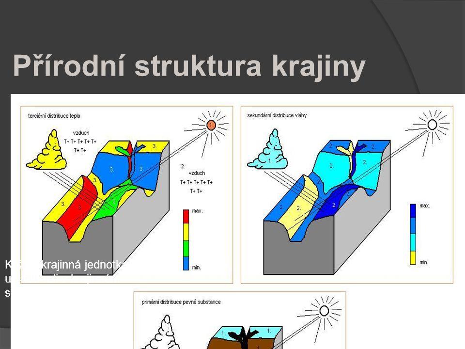 Přírodní struktura krajiny Aspekty: Funkcionální Bloková stavba = rozdělení rolí Každá krajinná jednotka plní určitou roli v krajinném systému svého o