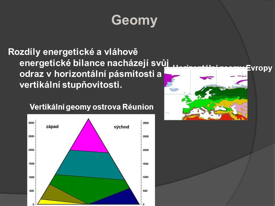 Geomy Rozdíly energetické a vláhově energetické bilance nacházejí svůj odraz v horizontální pásmitosti a vertikální stupňovitosti. Horizontální geomy