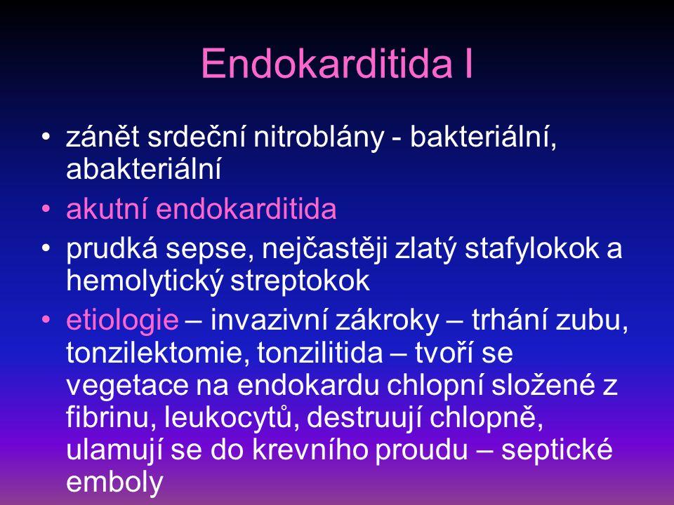 Endokarditida