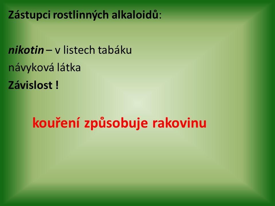 Zástupci rostlinných alkaloidů: nikotin – v listech tabáku návyková látka Závislost .
