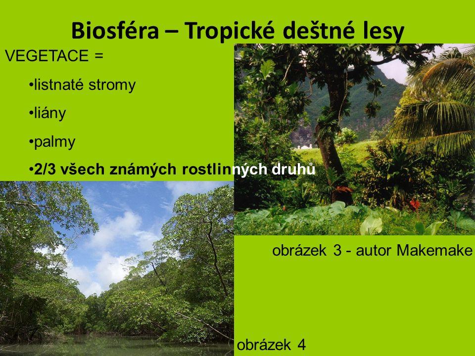 """Biosféra – Tropické deštné lesy PODNEBÍ = TROPICKÉ ROVNÍKOVÉ – vysoká teplota, velké množství srážek VEGETACE = velká rozmanitost rostlin, patrovitost – bylinné, keřové, korunové a stromové patro = 80 metrů i více """"Pralesy přecházejí do střídavě vlhkých lesů (Monzunových lesů) autor Milhausobrázek 2"""