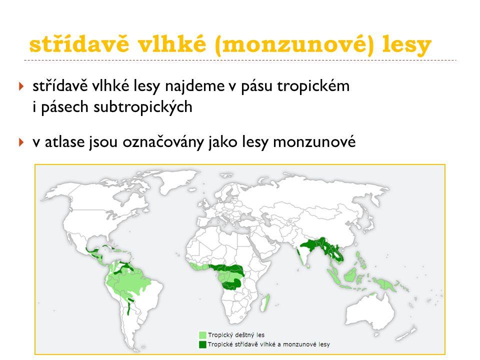 střídavě vlhké (monzunové) lesy  střídavě vlhké lesy najdeme v pásu tropickém i pásech subtropických  v atlase jsou označovány jako lesy monzunové