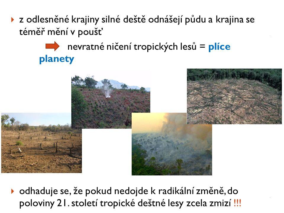  z odlesněné krajiny silné deště odnášejí půdu a krajina se téměř mění v poušť nevratné ničení tropických lesů = plíce planety  odhaduje se, že poku
