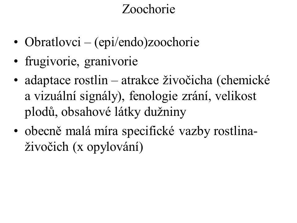 Zoochorie Obratlovci – (epi/endo)zoochorie frugivorie, granivorie adaptace rostlin – atrakce živočicha (chemické a vizuální signály), fenologie zrání, velikost plodů, obsahové látky dužniny obecně malá míra specifické vazby rostlina- živočich (x opylování)