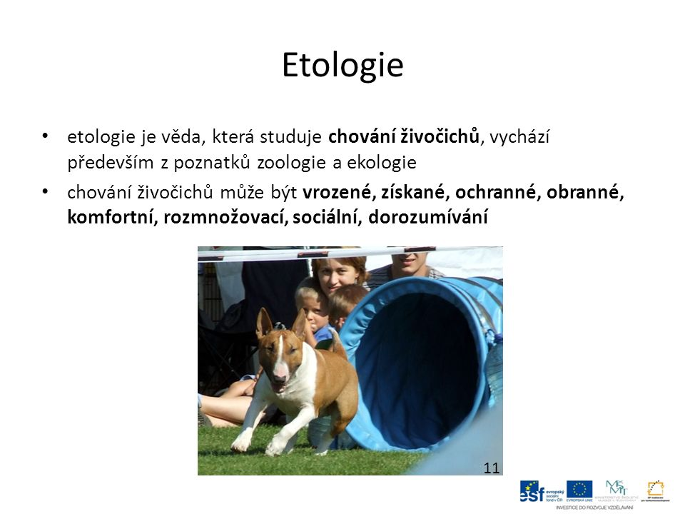Etologie etologie je věda, která studuje chování živočichů, vychází především z poznatků zoologie a ekologie chování živočichů může být vrozené, získané, ochranné, obranné, komfortní, rozmnožovací, sociální, dorozumívání 11