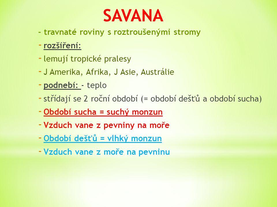 Savany jsou rozlehlé roviny porostlé převážně trávou.