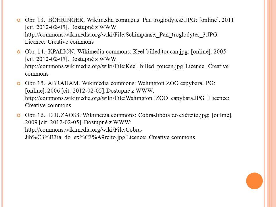 Obr. 13.: BÖHRINGER. Wikimedia commons: Pan troglodytes3.JPG: [online].