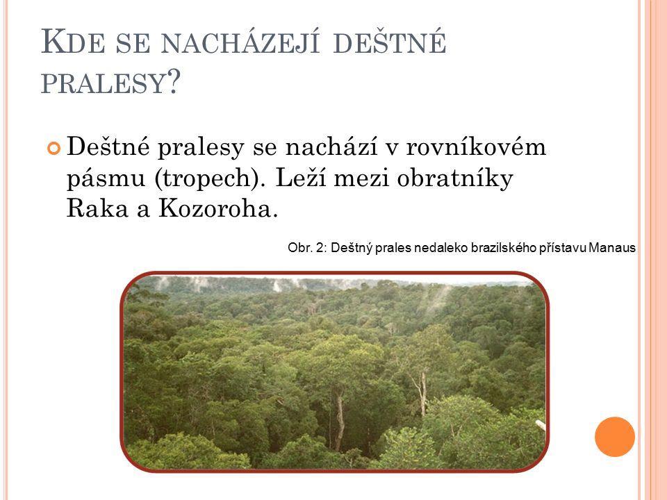 K DE SE NACHÁZEJÍ DEŠTNÉ PRALESY . Deštné pralesy se nachází v rovníkovém pásmu (tropech).