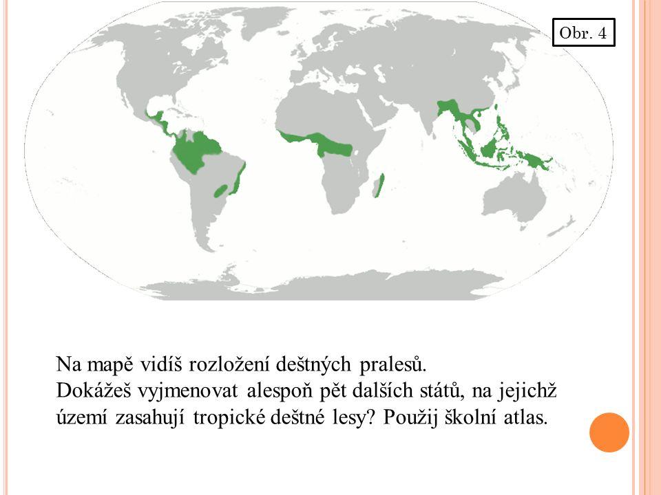 Na mapě vidíš rozložení deštných pralesů.