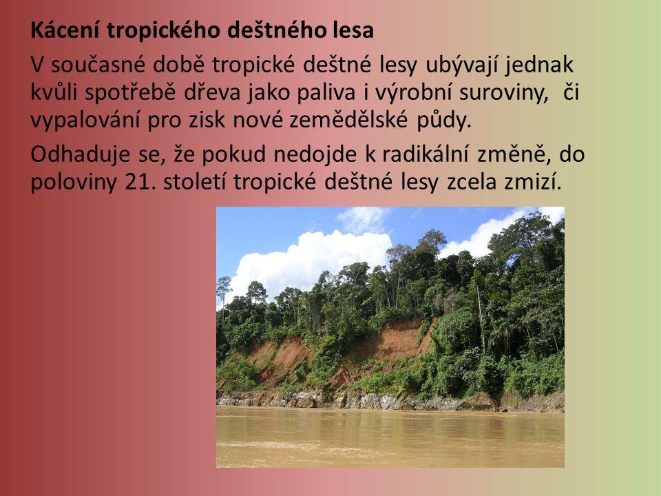 Kácení tropického deštného lesa V současné době tropické deštné lesy ubývají jednak kvůli spotřebě dřeva jako paliva i výrobní suroviny, či vypalování pro zisk nové zemědělské půdy.