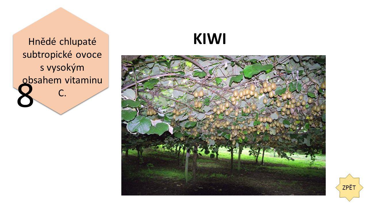 ZPĚT Hnědé chlupaté subtropické ovoce s vysokým obsahem vitaminu C. 8 KIWI