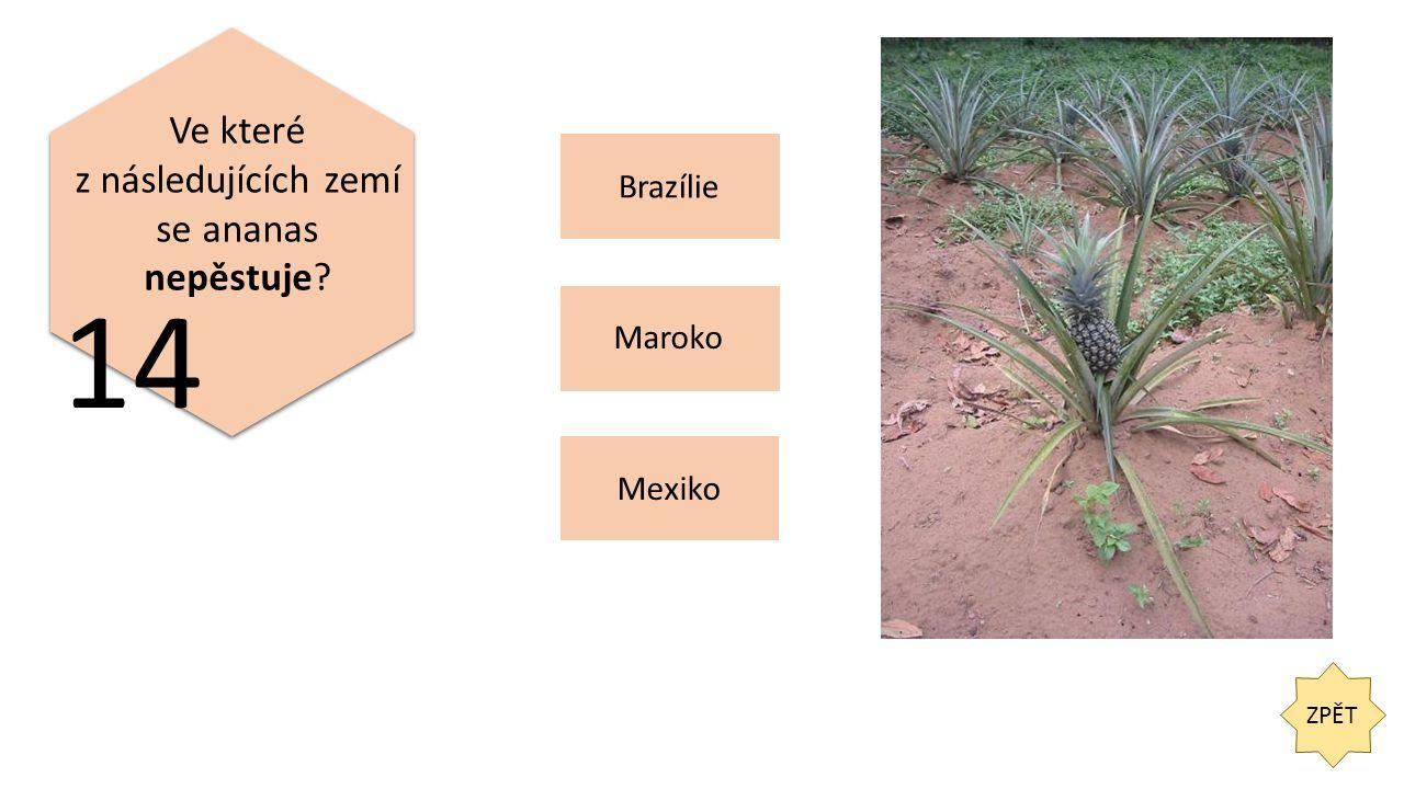 ZPĚT 14 Ve které z následujících zemí se ananas nepěstuje Brazílie Mexiko Maroko