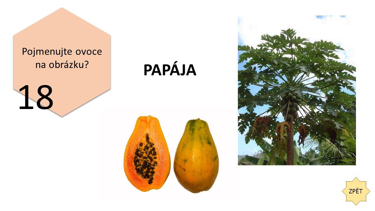 ZPĚT 18 Pojmenujte ovoce na obrázku PAPÁJA