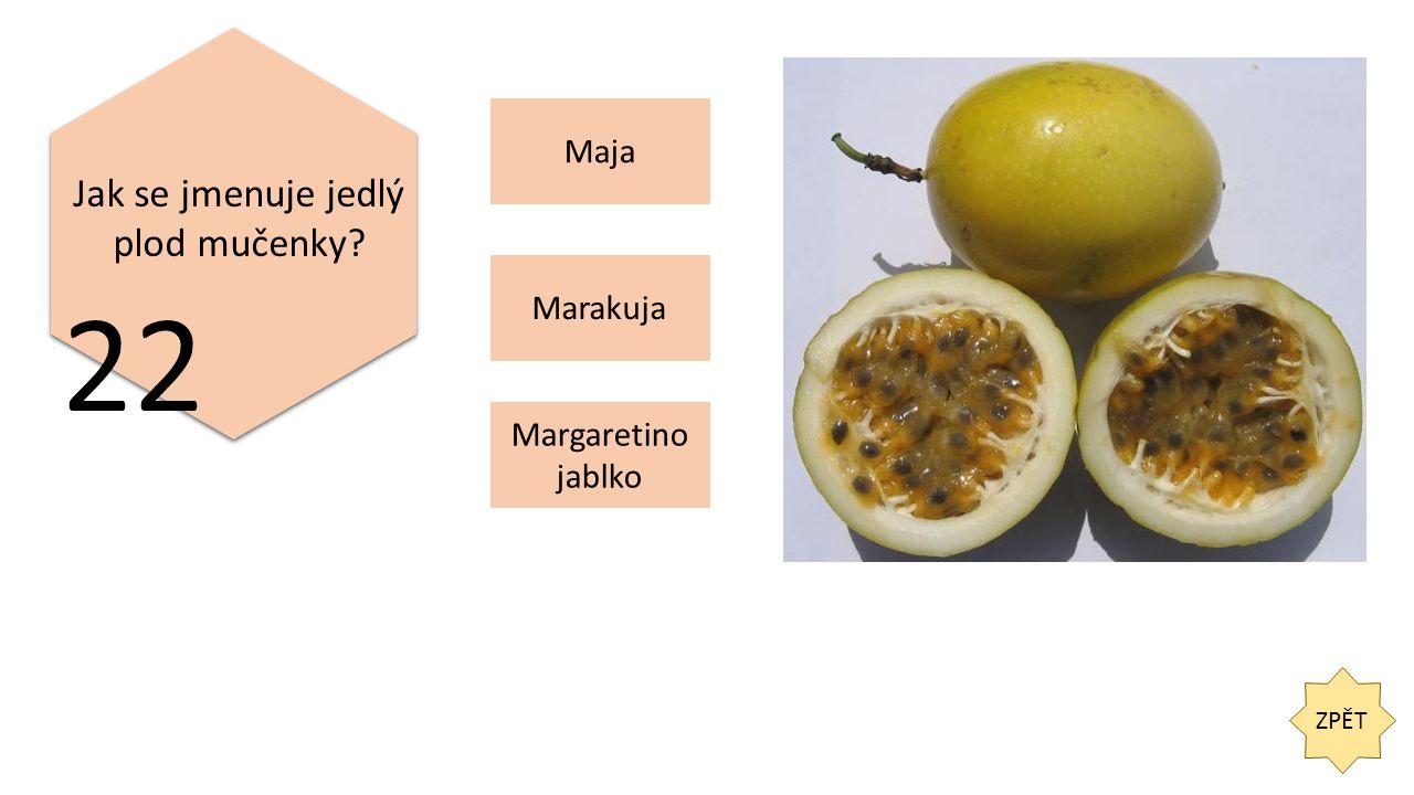 ZPĚT 22 Jak se jmenuje jedlý plod mučenky Maja Margaretino jablko Marakuja